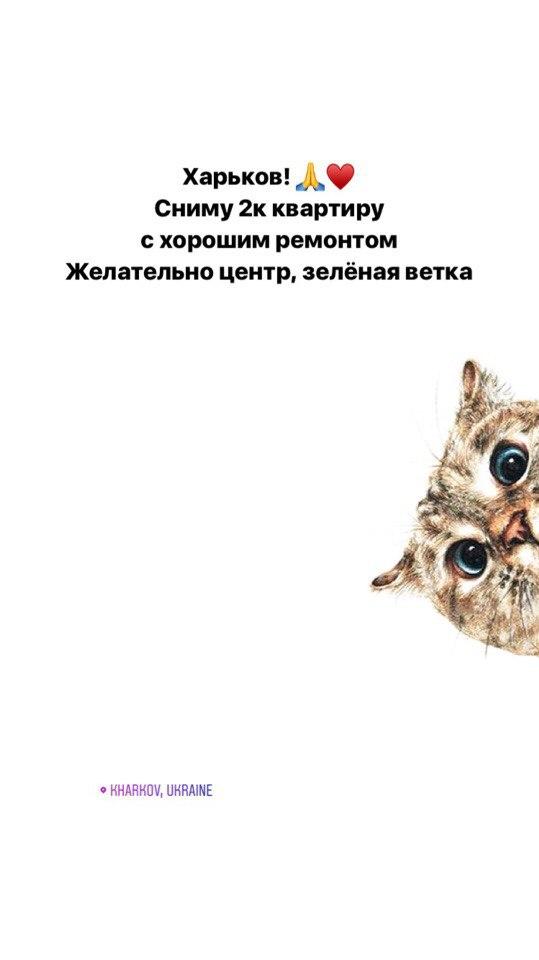 Kristina Grebenyuk vk