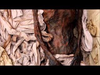 Фаюмская мумия и портрет. Маттиас - золотой ребенок.