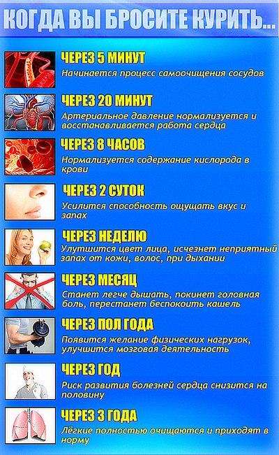 какие таблетки надо пить чтобы похудеть