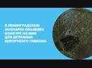 В Ленинградском зоопарке объявлен конкурс на имя для детеныша белорукого гиббона