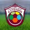 Футбольная школа Александра Стёпина