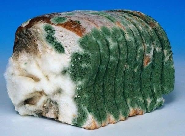 Хлеб всему «голова»
