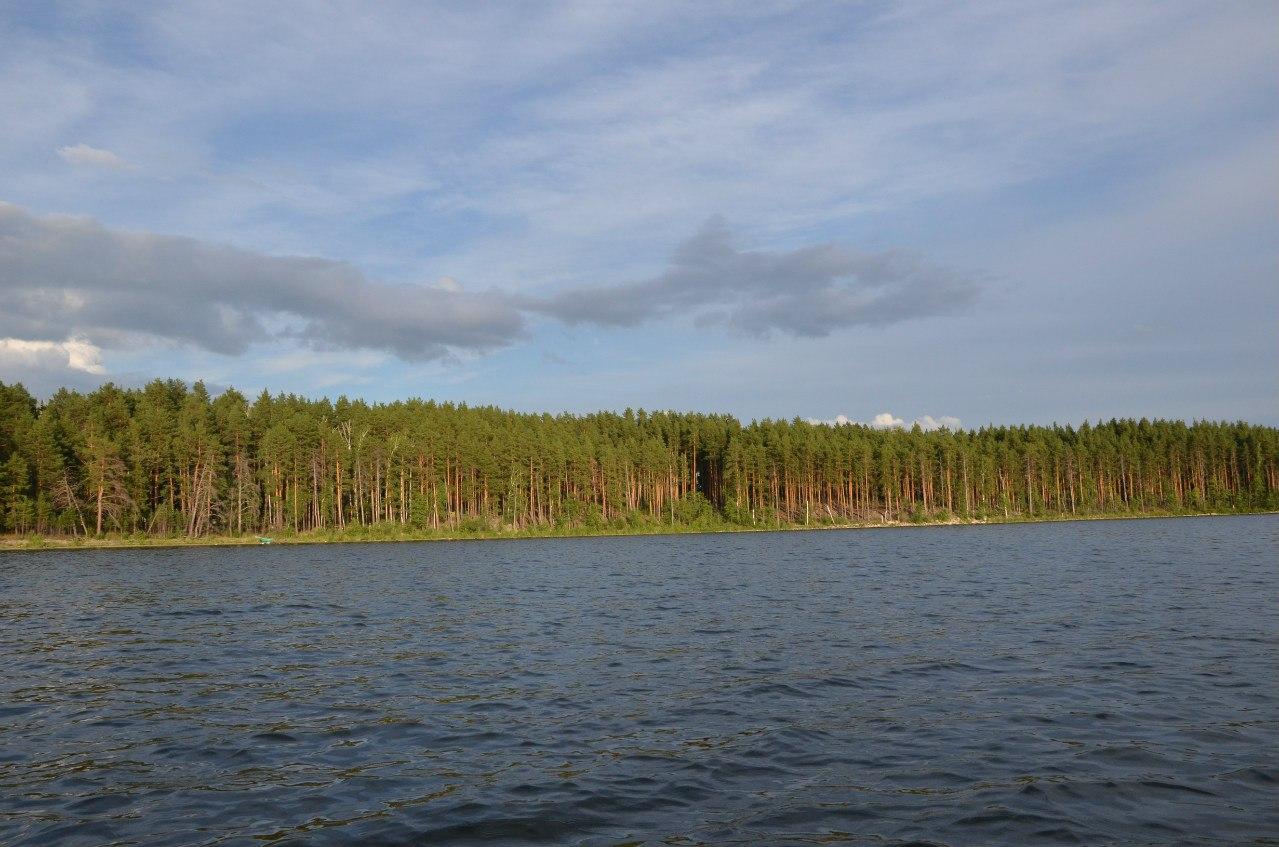 Берега озера Большое Миассово (06.11.2014)