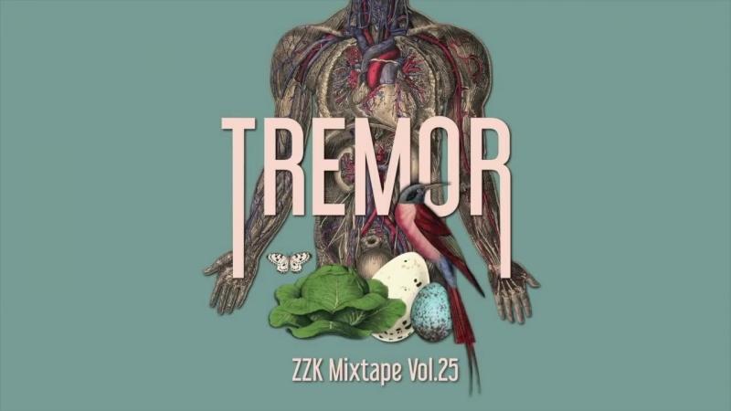 ZZK Mixtape Vol.25 - Tremor (2017)