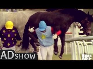 Crazy sport: Menback riding by horses!