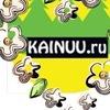 Kainuu.ru-отдых-туризм-шоппинг-