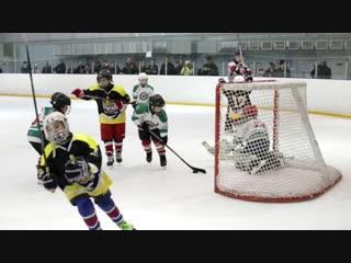 Рождественский хоккейный турнир среди юношей 2010-2012 г.р.