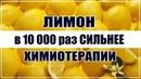 Лимон в 10 000 РАЗ СИЛЬНЕЕ Химиотерапии. Съешь на тощак и получишь......