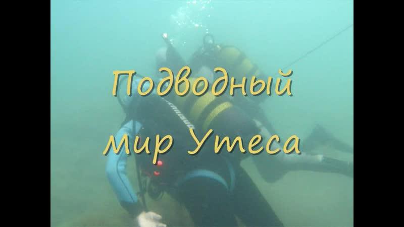 Подводный мир Утеса