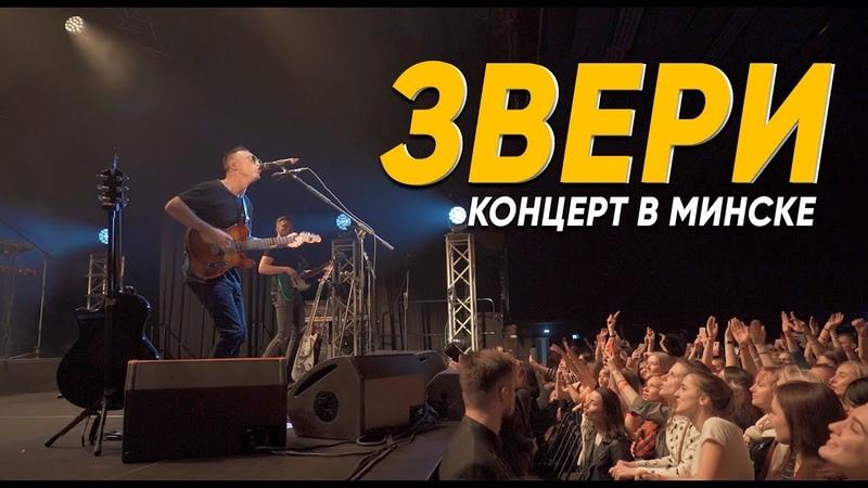 Звери: выступление в Минске | 2019