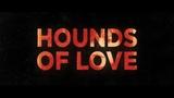 Гончие любви (2016) #триллер, #ужасы, #среда, #кинопоиск, #фильмы ,#выбор,#кино, #приколы, #ржака, #топ