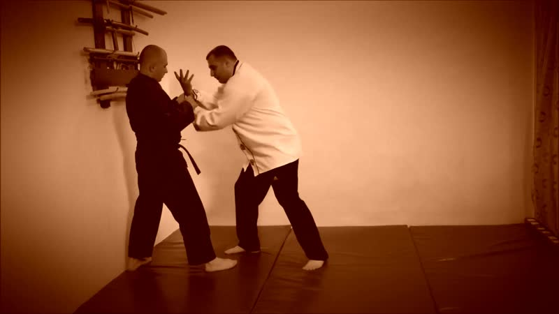 Rebel Hapkido Series 합기도 By Vidadi Hajiyev (47)