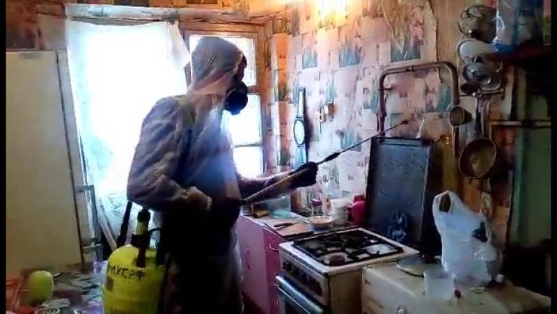 Обработка 3-х комнатной квартиры от тараканов. Ярославль. 22 ноября 2017 года.
