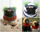 вязание шапок для собак.