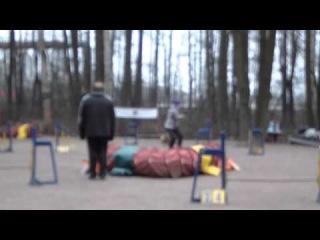 Холина Светлана и Берта на соревнованиях на пионерской А2 30.11.14