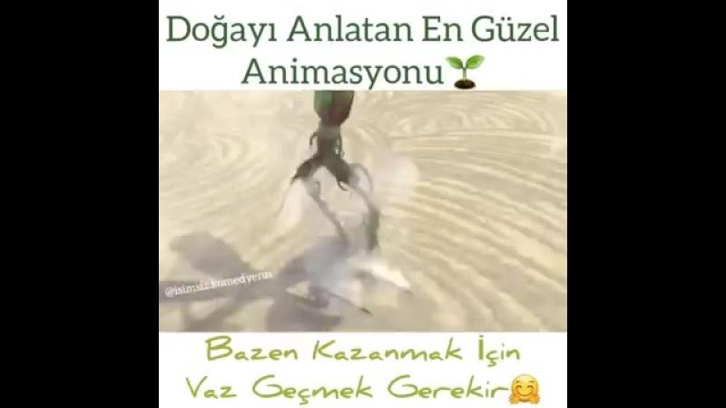 Dogayi_Anlatan_En_Guze_Animasyon_Kisa_Film_(VIDEOARA.mp4