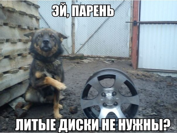 ру шина: