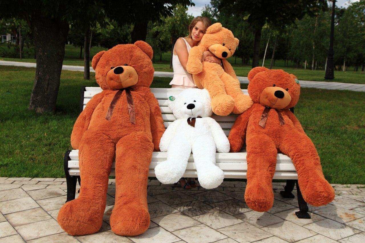 Самые большие игрушки девушек 7 фотография