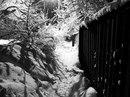 Андрей Афанасьев фото #36