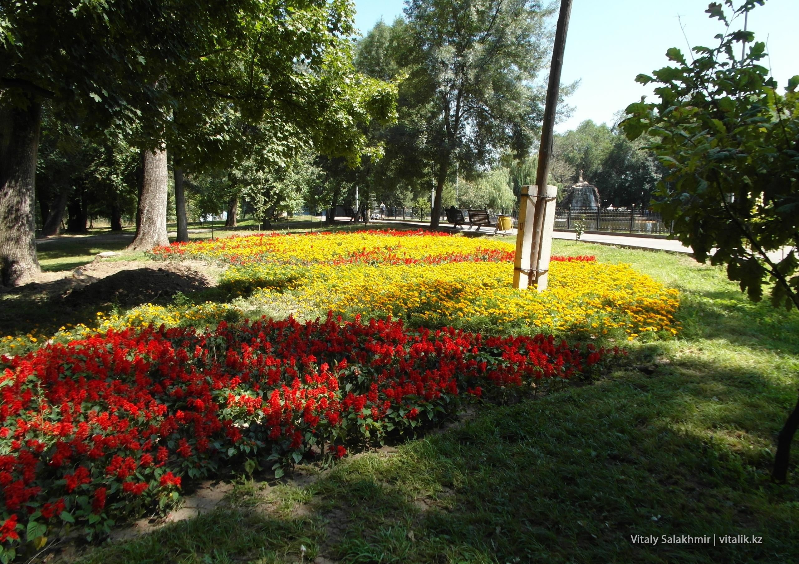 Цветы в Парке Горького, 2018