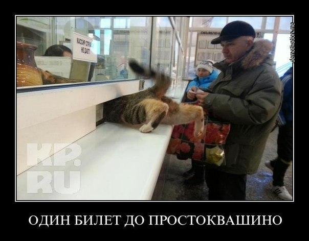 ГРУППА ПРИКОЛЫ В КОНТАКТЕ | VK: vk.com/club46563020