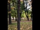 видео Instagram lizamami klizamamikУтренняя прогулка по прекрасному,дождливому Питеру...💔 Saint Isaacs Cathedral