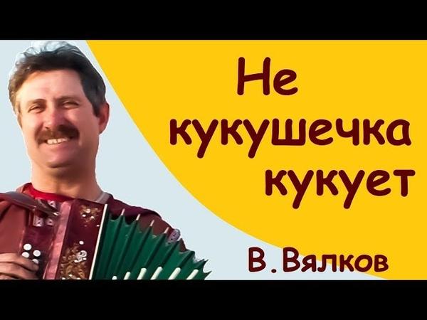МузЫкАлКа () РАЗБОР () Не кукушечка кукует (В.Вялков)