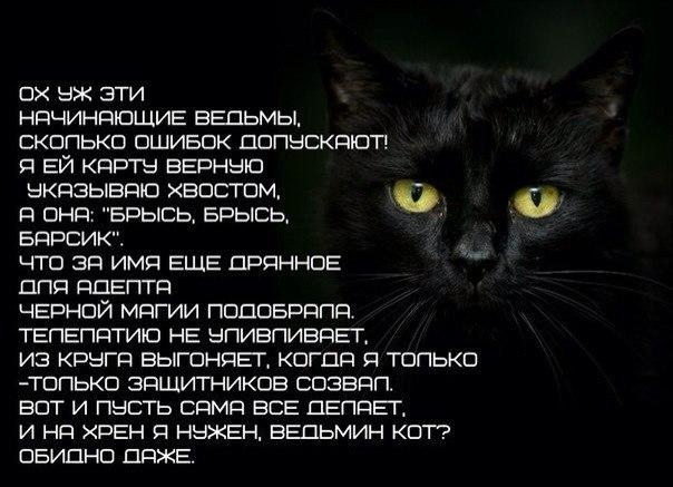 Привлечение денег - abcmag.ru
