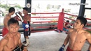 Видеообзор БУЛАТ (РОССИЯ) Muay Thai: Teded99 gym, Bangkok.
