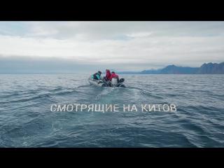 Смотрящие на китов: представляем трейлер фильма