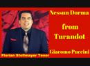 Nessun Dorma from Turandot Florian Stollmayer Tenor