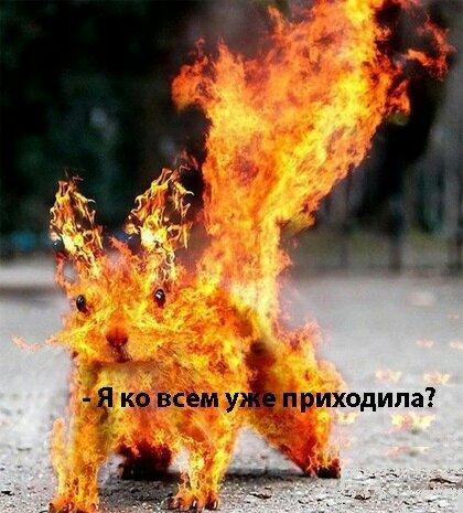 ZIT_HkYP_aE.jpg