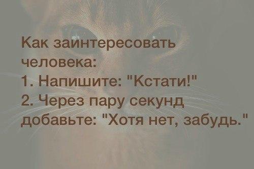 http://cs607830.vk.me/v607830435/4072/dtzlh5bB4LQ.jpg