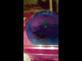 мышь бегун