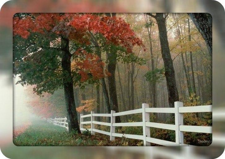 Autumn time ... - Pagina 2 Tajwm4BamYw