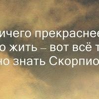 Анкета Александр Викторов