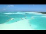 DRIVE feat Alёna Nice - Sea of love