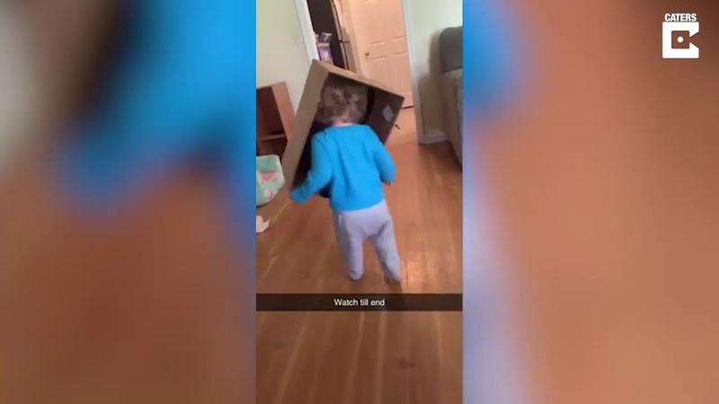 Родители года девочка врезалась в стену а папаше смешно