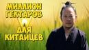 ✅ Китайцы на Дальнем Востоке правда и домыслы, выгоды и угрозы. Экспансия России Китаем.