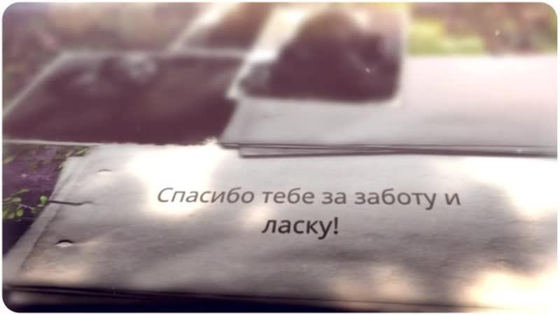 Лизунов 360p