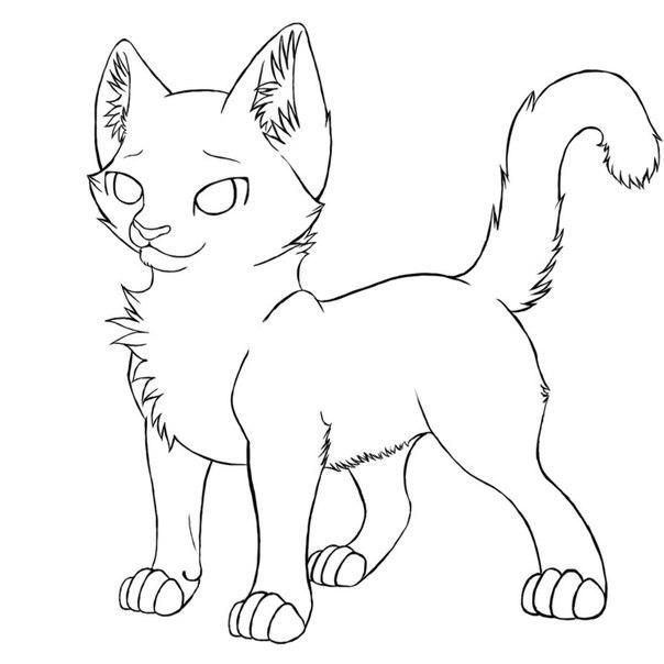 Коты воители манекены котят