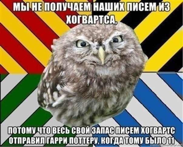 http://cs405323.vk.me/v405323054/7e72/cUKmNwSVhFk.jpg