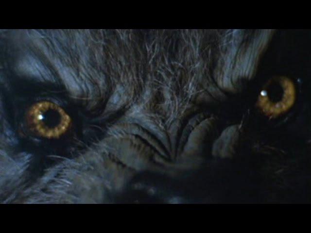 Daniel Deluxe - Night Stalker (Music Video)