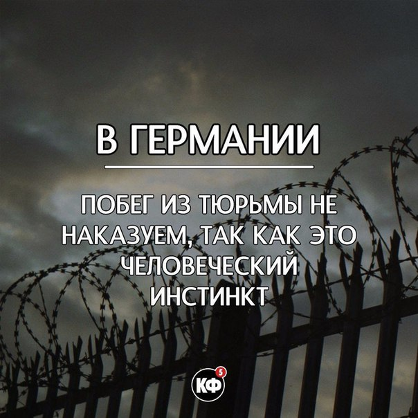 Фото №456281659 со страницы Никиты Карташова