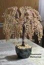795 просмотра. нра. дерево объёмное. плетение петельное.  Альбом пользователя Наташа Пехенько. зелёный.