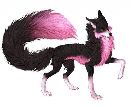 Скачать аву волка 6
