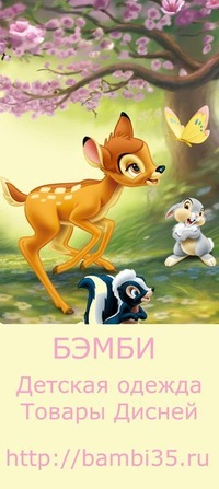 Дарья Смирнова, 26 июля , Череповец, id229349197