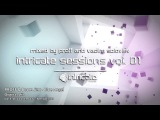 INTRICATE SESSIONS VOL. 01 MIXED BY PROFF &amp VADIM SOLOVIEV