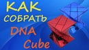 Как собрать DNA Cube | How to Solve the DNA Cube | Tutorial