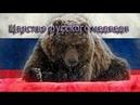 Царство русского медведя. Фильм 1. Хозяин тайги